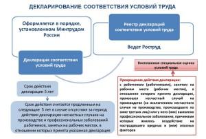 Декларация специальной оценки условий труда